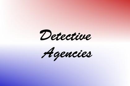 Detective Agencies Image