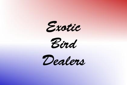 Exotic Bird Dealers Image