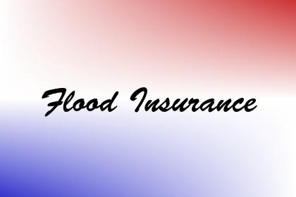 Flood Insurance Image