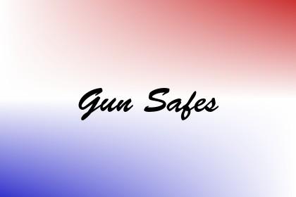 Gun Safes Image