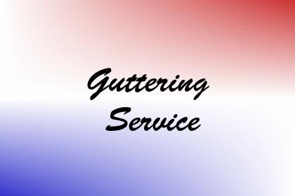 Guttering Service Image