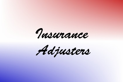 Insurance Adjusters Image