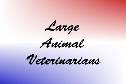 Large Animal Veterinarians Image