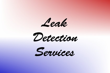 Leak Detection Services Image