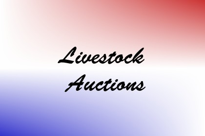 Livestock Auctions Image