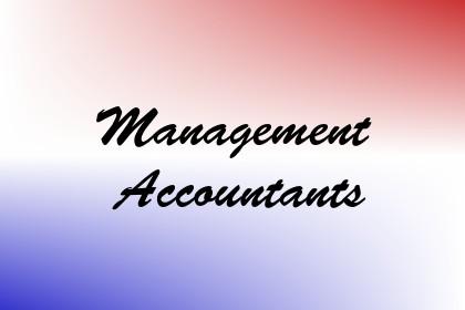 Management Accountants Image