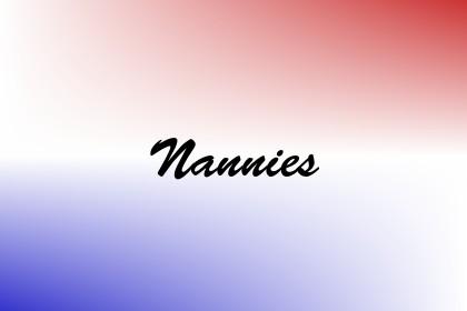 Nannies Image