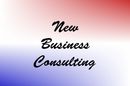 New Business Consulting Image