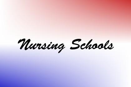 Nursing Schools Image