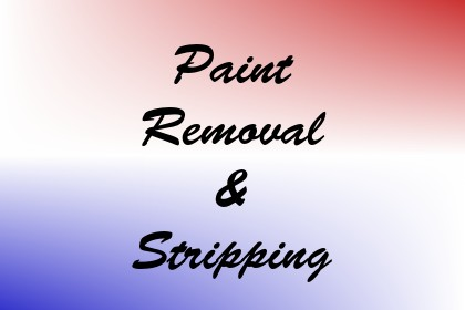 Paint Removal & Stripping Image