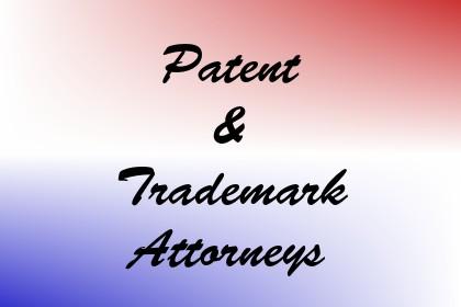 Patent & Trademark Attorneys Image