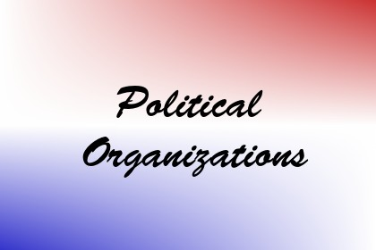 Political Organizations Image