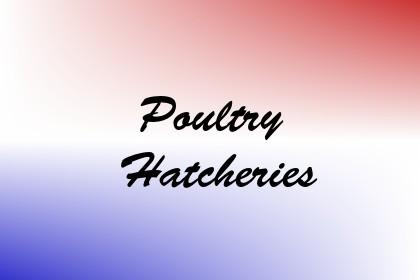 Poultry Hatcheries Image