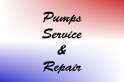 Pumps Service & Repair Image