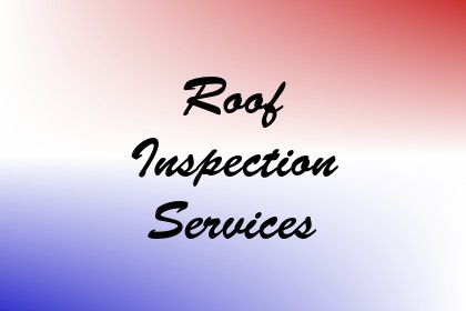 Roof Inspection Services Image