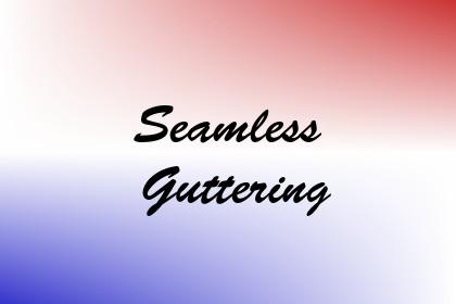 Seamless Guttering Image