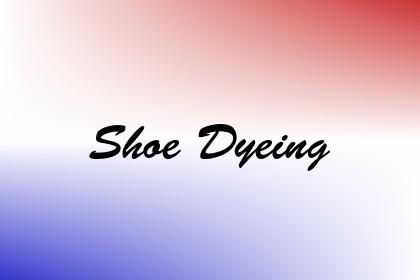 Shoe Dyeing Image