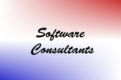 Software Consultants Image