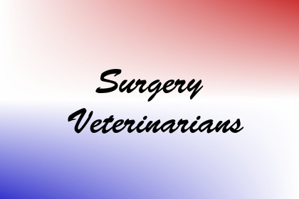 Surgery Veterinarians Image