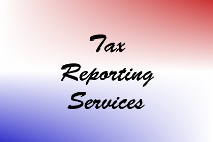 Tax Reporting Services Image