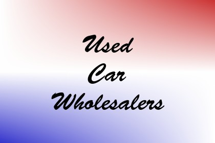 Used Car Wholesalers Image