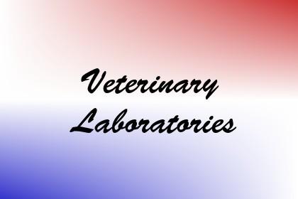 Veterinary Laboratories Image