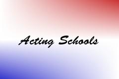 Acting Schools