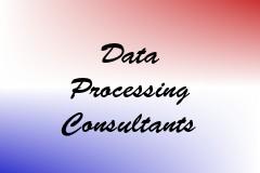 Data Processing Consultants