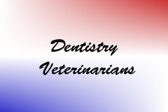 Dentistry Veterinarians
