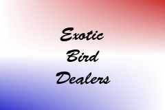 Exotic Bird Dealers