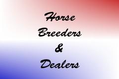 Horse Breeders & Dealers
