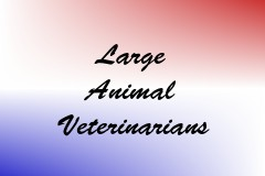 Large Animal Veterinarians