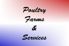 Poultry Farms & Services