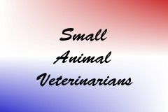 Small Animal Veterinarians