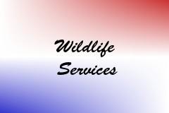 Wildlife Services