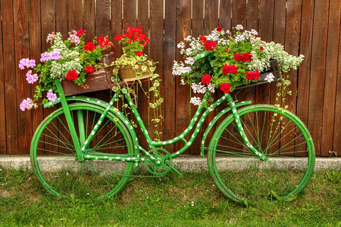 old green bicycle with flowers - against a wooden fence